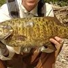 Dan Morey Erie Smallmouth